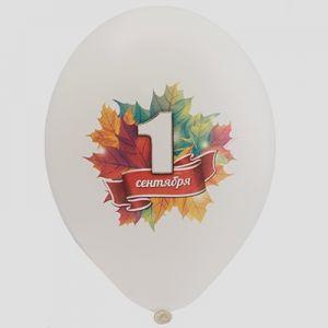 Л. Шар (с рис) (14''/36 см) 1 сентября - 1 Сентября 5 Цв -; Ассорти